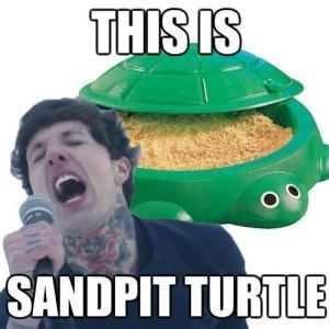 Sandpit Turtle